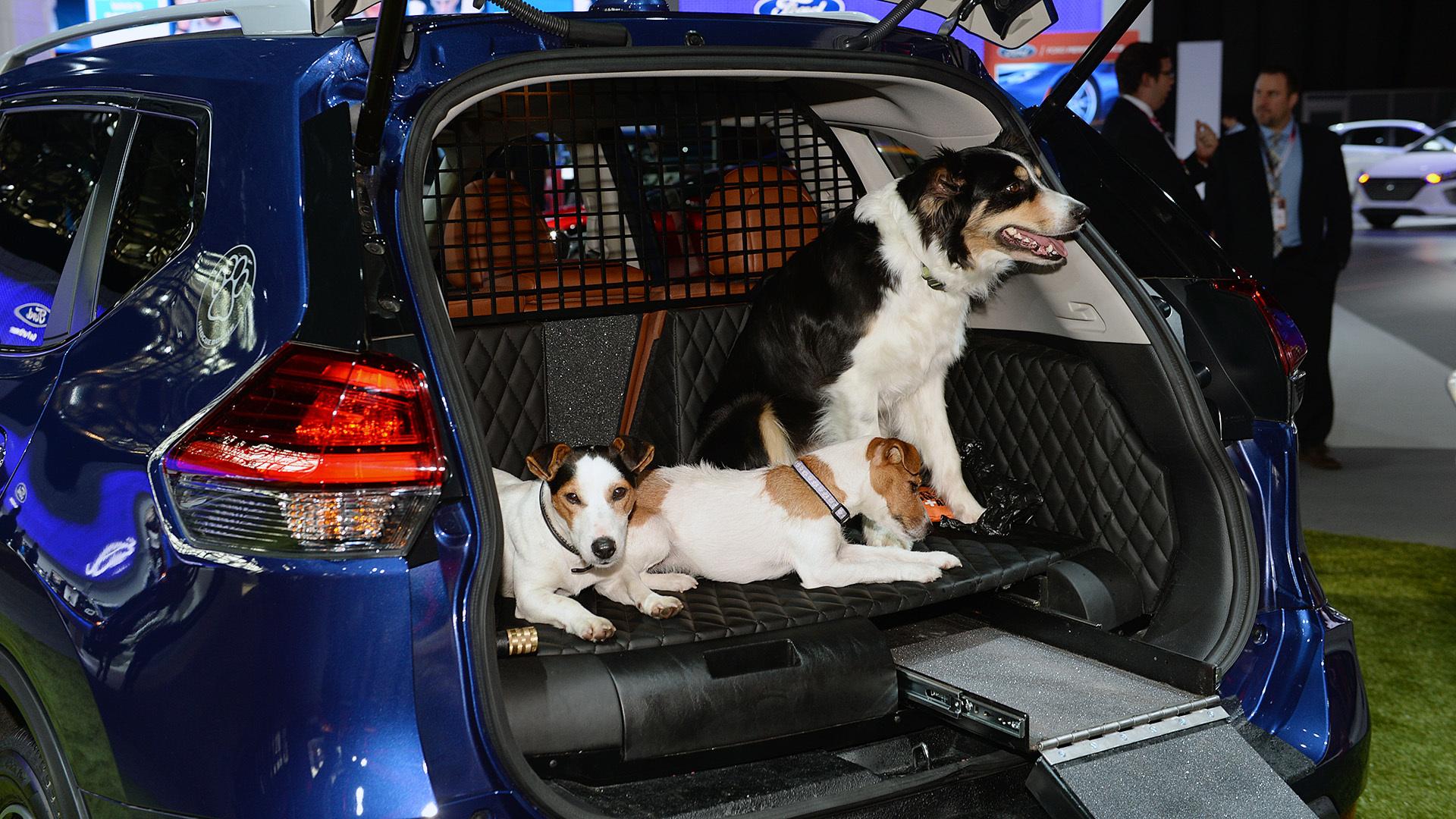 Nissan Dogue