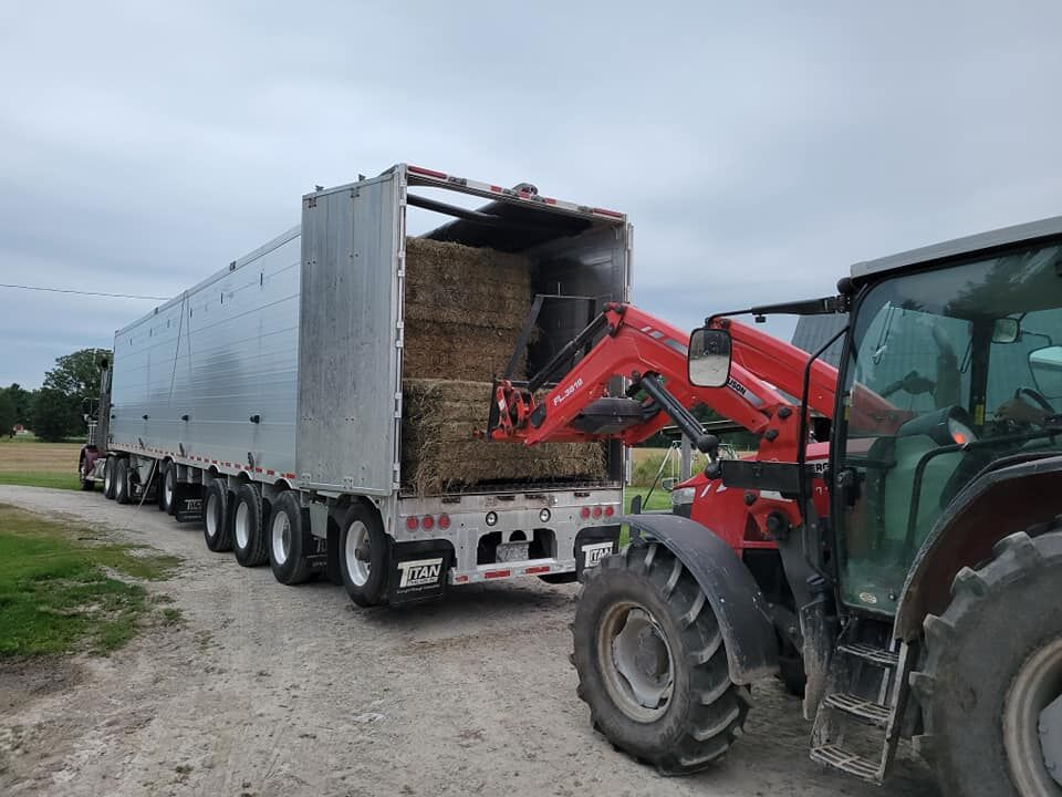 Loading up the hay for the trip to Rainy River